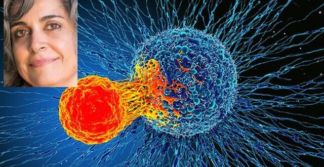 روش جدید دانشمند ایرانی برای بررسی نحوه واکنش سرطان به ایمنیدرمانی