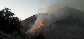 چرا بالگرد و هواپیما کمتر بر فراز آتش جنگلهای کشور مشاهده میشوند؟